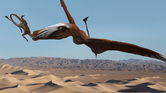 Giant Pterosaur | Credit: Josh Cotton