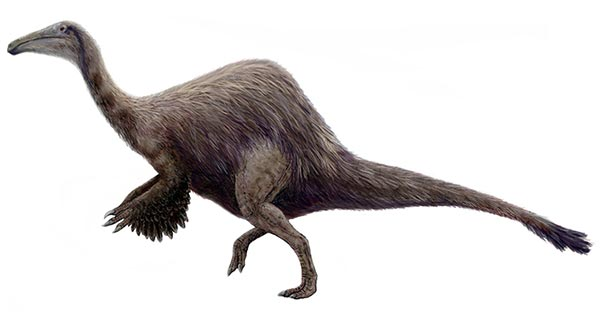 Deinocheirus mirificus - Restoration based on specimens described in 2014 [Credit: Michael B. H.]