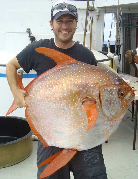 Nick Wegner holding an Opah | https://www.flickr.com/photos/nmfs_northwest/17208575760/  From NOAA Fisheries West Coast