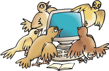 Birds with Computer