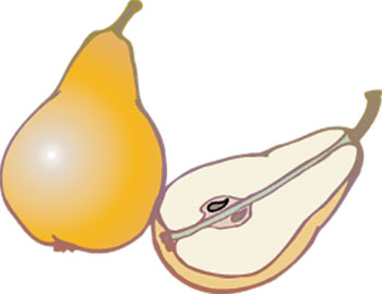 A pear cut open showing its seeds