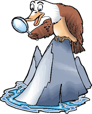 Cartoon eagle with magnifying glass perched on rock