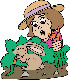 rabbit in a garden